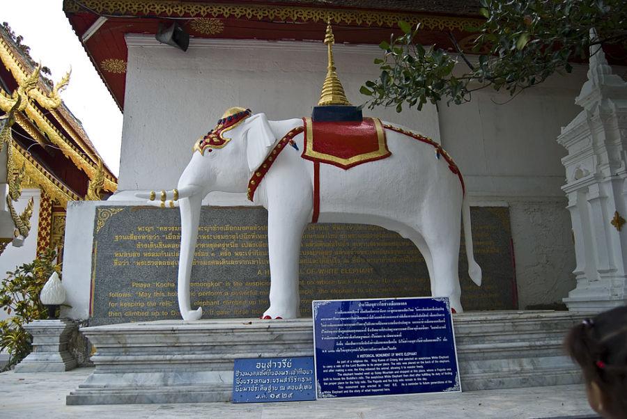 Templo Doi Suthep - Chiang Mai - Historia del elefante blanco