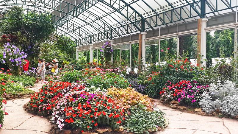 Flores de Bhubing Palace - Palacio de invierno Real - Chiang Mai