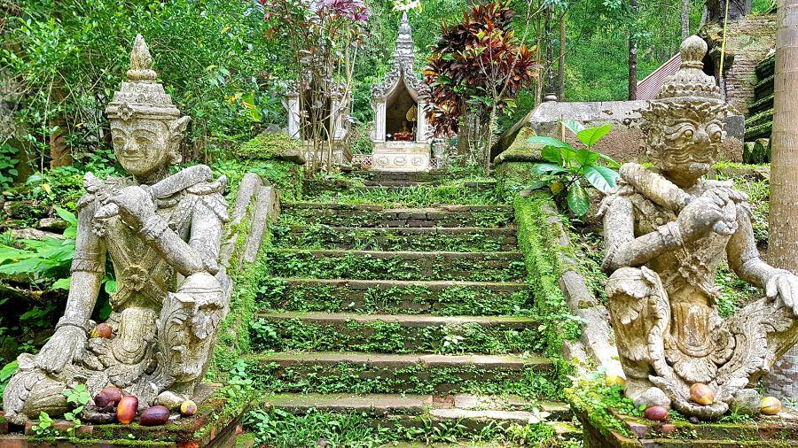 TemploWat Pha Lat - Chiang Mai - Ruinas en la selva