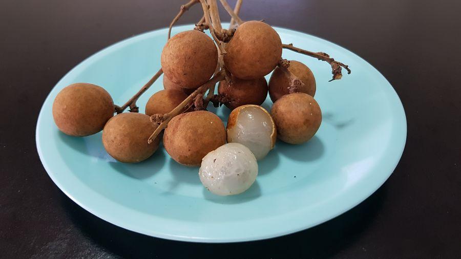 Frutas Tropicales de Tailandia - Longan Abierto