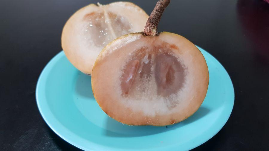 Frutas Tropicales de Tailandia - Santol Abierto