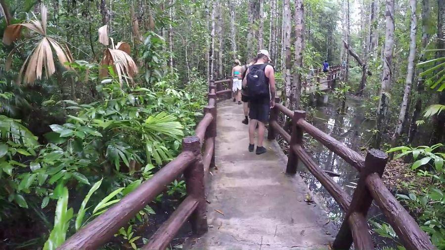 Krabi Hot Springs -Aguas Termales - Acceso