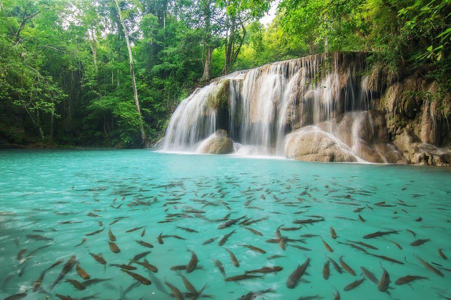 Cascadas Erawan - Nivel 2 - Kanchanaburi (Tailandia)
