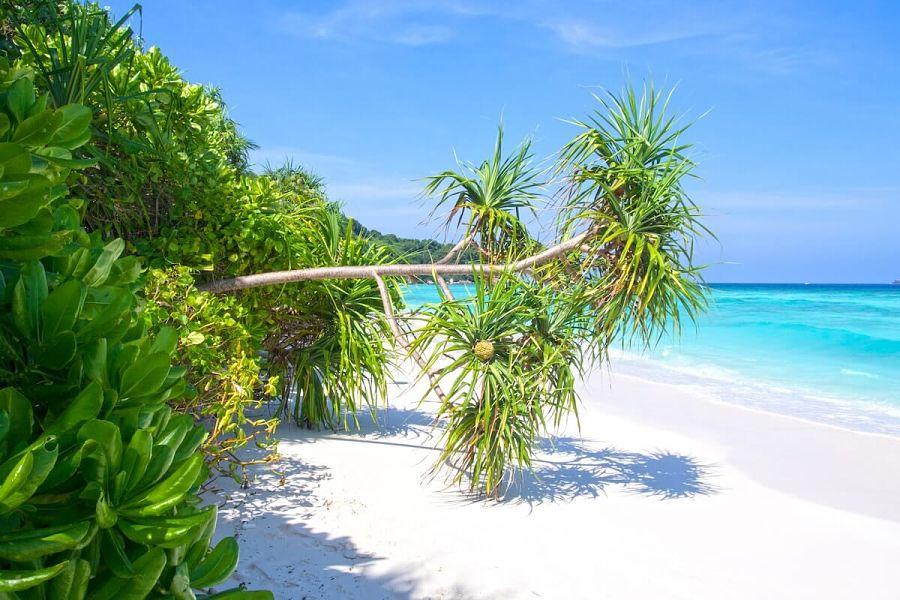 Islas Similan - Tailandia