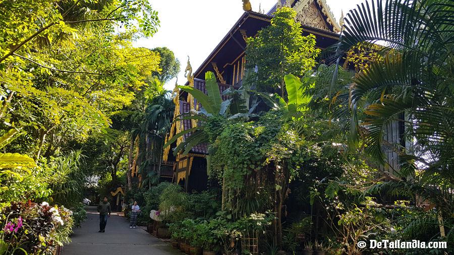 Acceso al museo del Buda Esmeralda de Chiang Rai