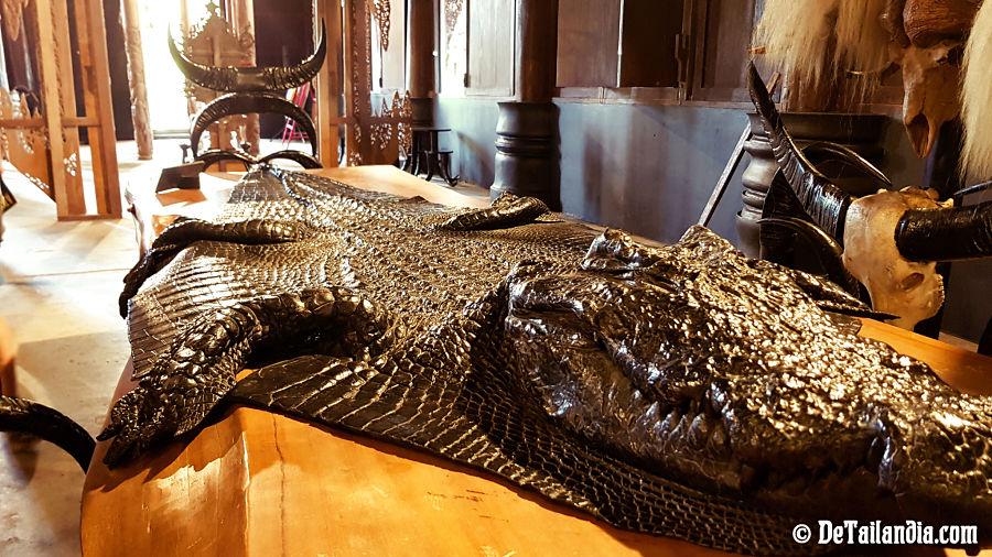 Piel de cocodrilo en la Casa Negra de Chiang Rai - Museo Baandam