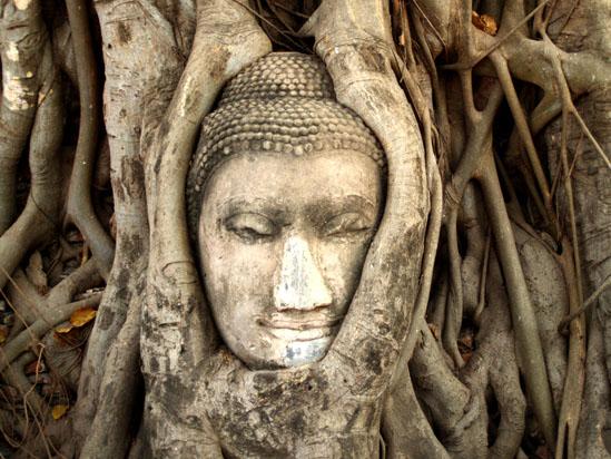 Ayutthaya Historical Park , Ayutthaya , Thailand